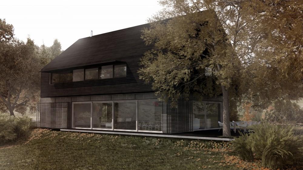 AN4_Koncepcje domów w Antoninach